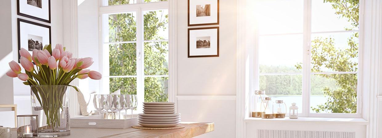 Fenster Blume 1240x450 | Koopmann&Hermes