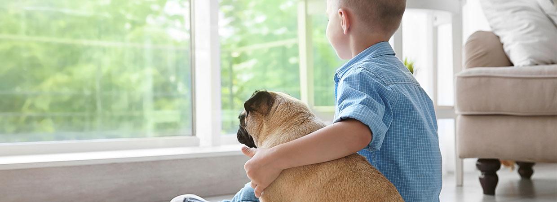 Junge mit einem Hund im Arm 1240x450 | Koopmann&Hermes